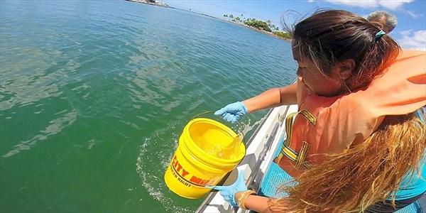 Alberto Azario - Ocean Sampling Day